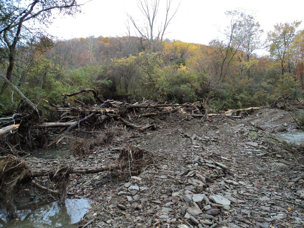 Pennsylvania Creek Restoration Project