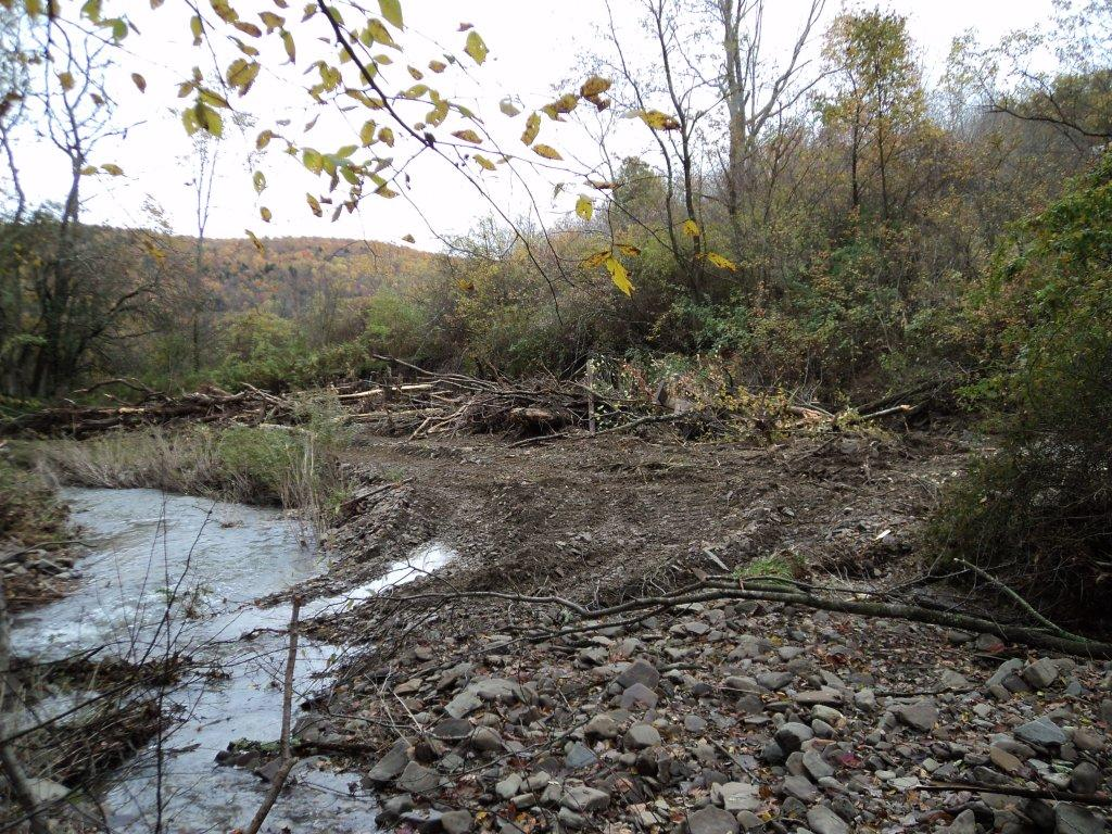 US Creek Restoration Project