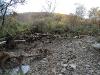 Pennsylvania Creek Restoration Project